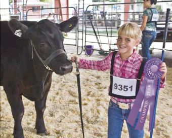 Zilmax Sales Brochure Touts its Use in Champion Cattle