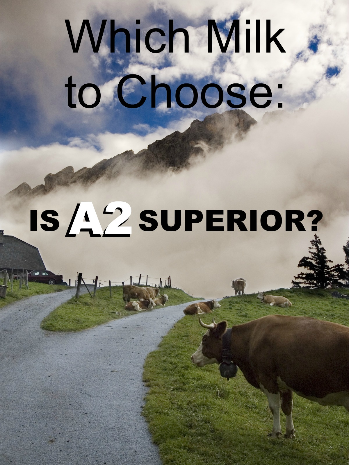 which-milk-to-choose-is-a2-superior