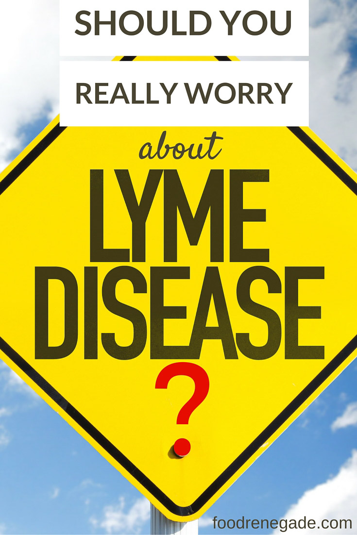 Should you really worry about chronic Lyme disease?
