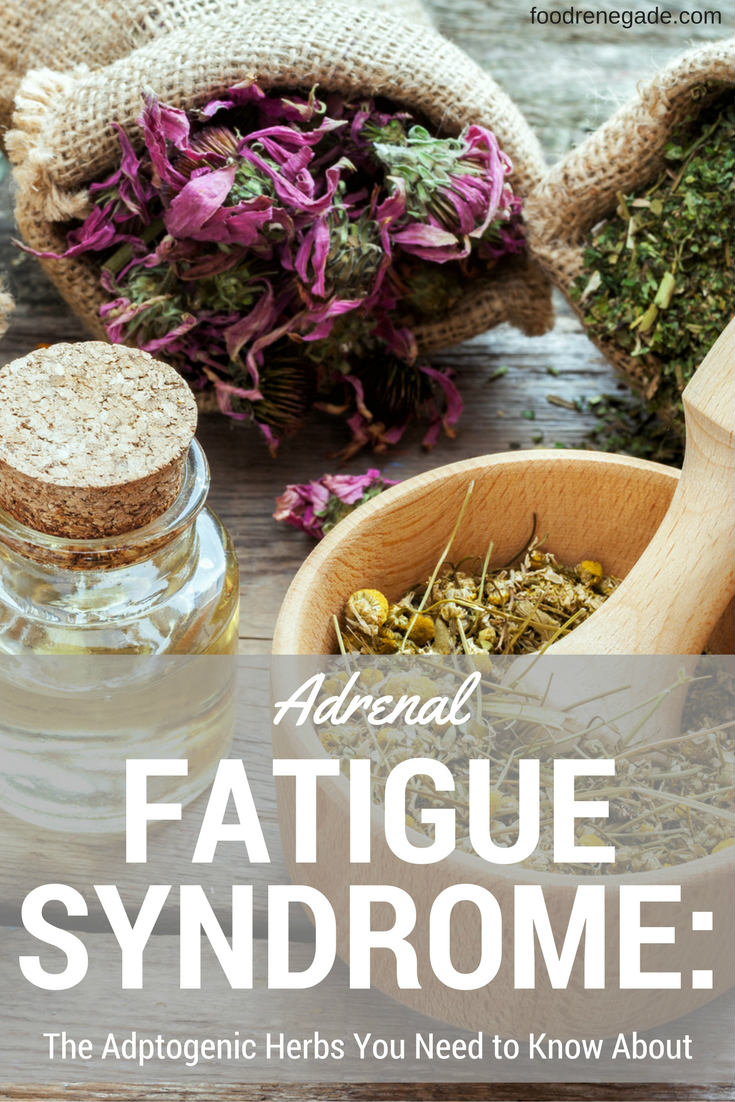 Adrenal Fatigue Syndrome: The Adaptogenic Herbs You Need to Know About | Food Renegade